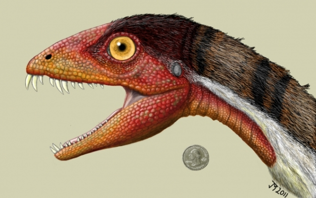 Daemonosaurus-face