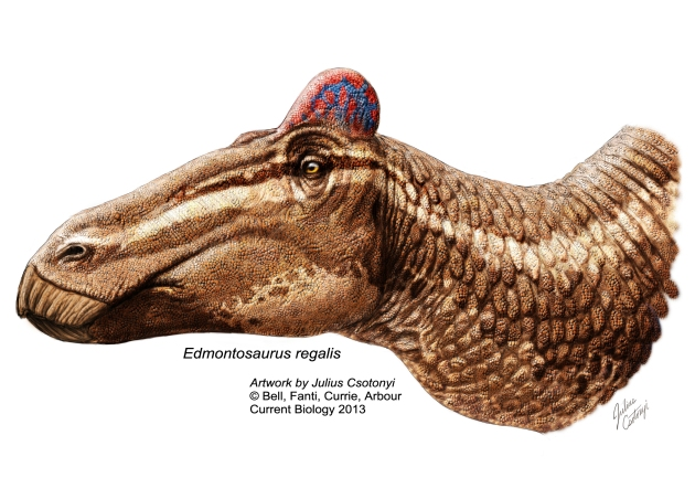 edmondosaurus regalis