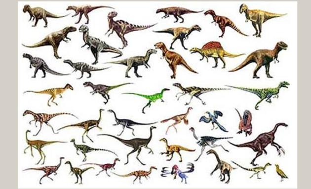 Theropods crowd