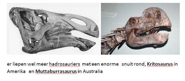 kritosaurus & muttaburasaurus