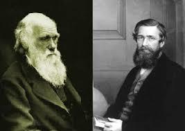 darwin en wallace