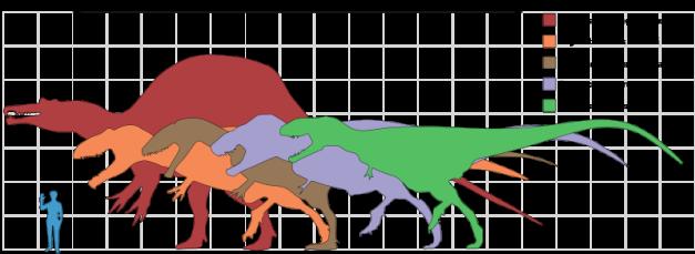 Giganotosaurus-graph