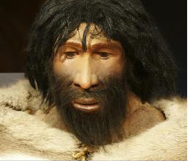 moderne reconstructie neanderthaler man