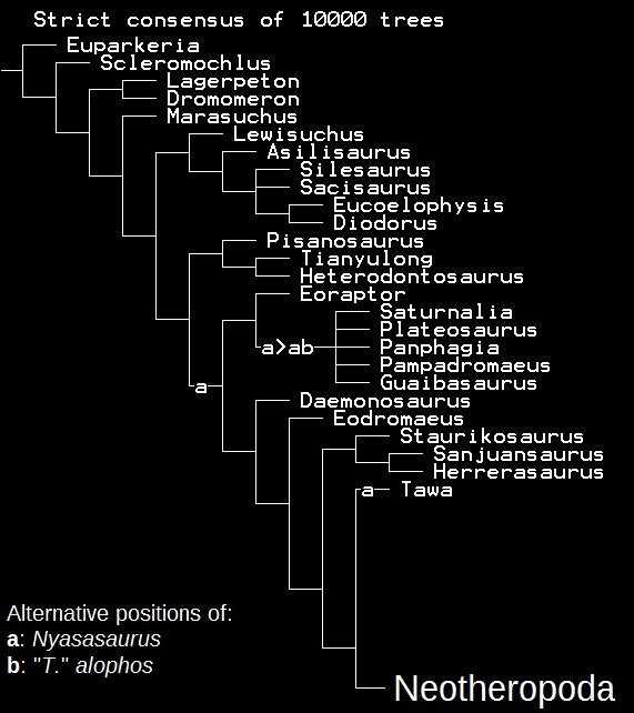 Nyasasaurus vs T alophos update