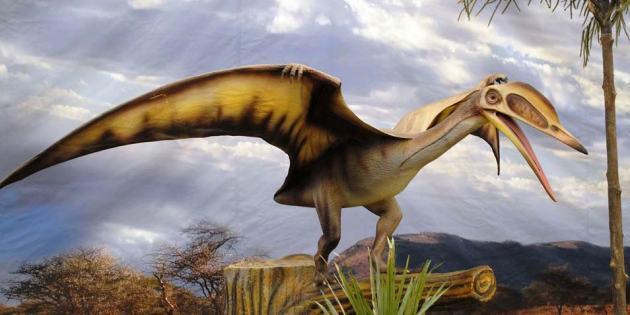 pterosaurus