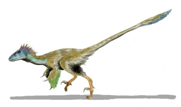 Utahraptor-BW
