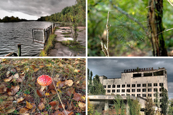 chernobyl  06CHER_COMBOSPAN-articleLarge-v2