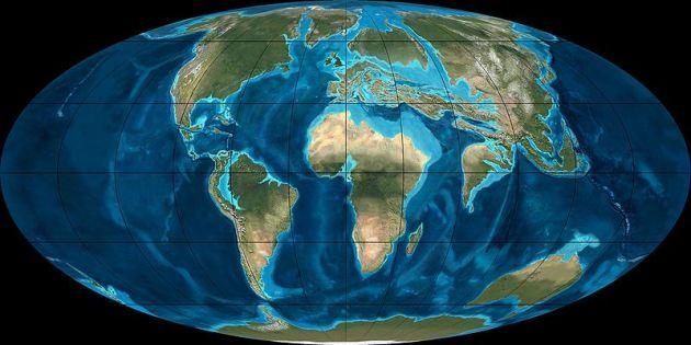 800px-Eocene50myaGlobal