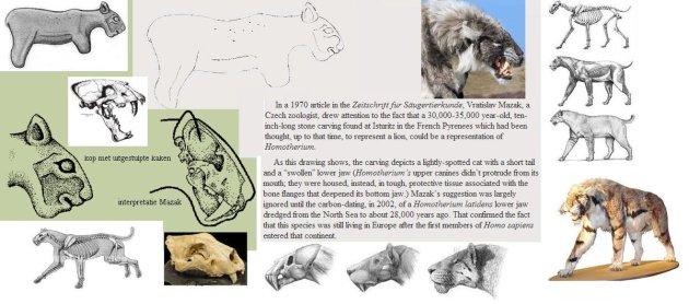 Homotherium-latidens