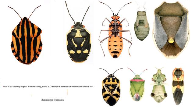 mutated bugs