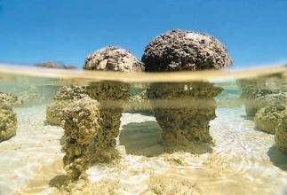 Sedimentaire rotsen radioactieve dating