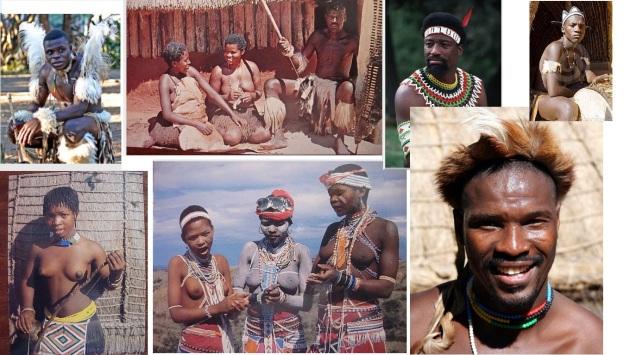 zulu types