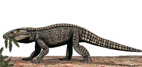 chimaerasuchus spaghesaurus