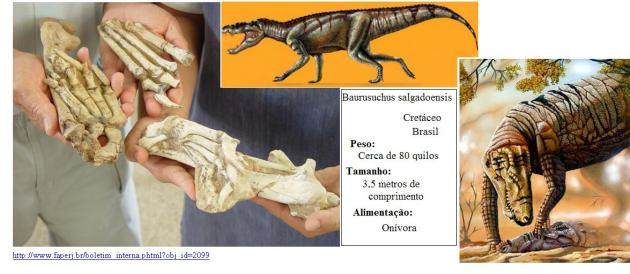 Baurusuchus salgadoensis. 2