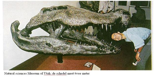 Deinosuchus  Utah