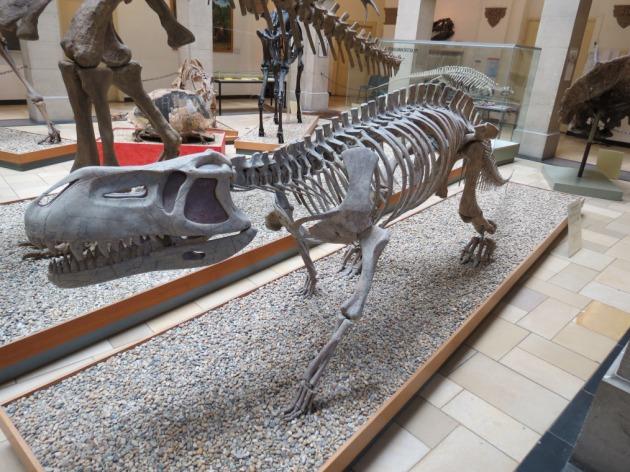 prestosuchus bayern