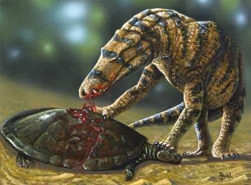 uberabasuchus