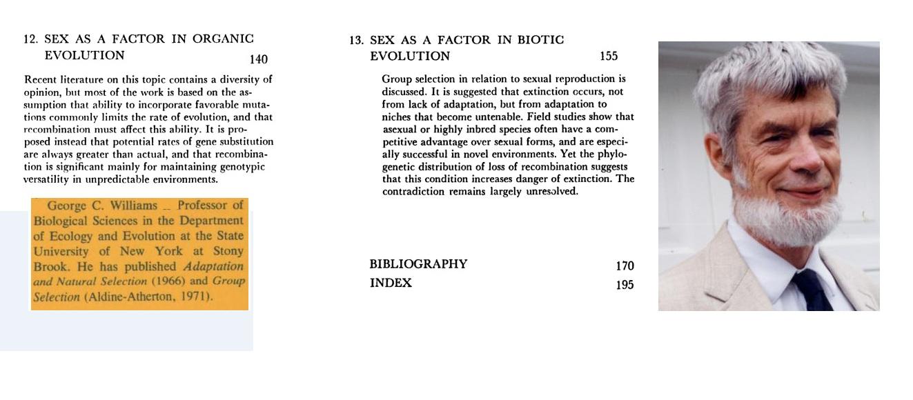 B b immens mpg s sex