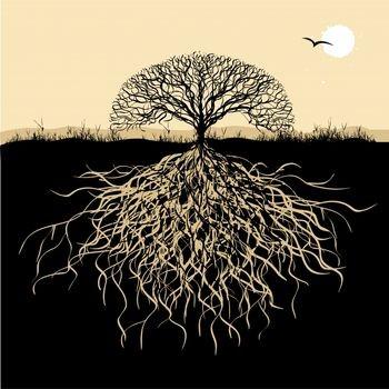 32944-tree-life-natural-spirituality-343684-3428-4