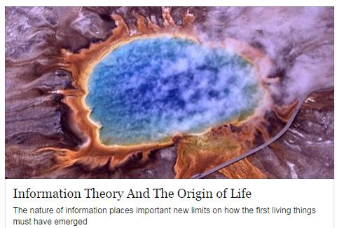 information theory and the origin of life