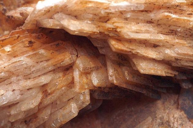 Calciet+Bariet-Rammelsbach%20Kusel-Germany%20detail