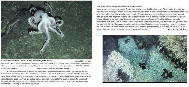 diepzee heetwaterbron in antarctica