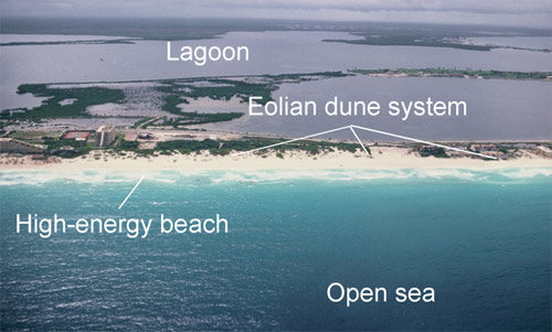 Isla Cancun barrier island off Yucatan Peninsula, Mexico, with Holocene eolian dune development. From Loucks and Ward (2001).