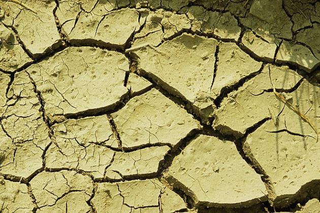 Ongerijpte bodem2 door droogte