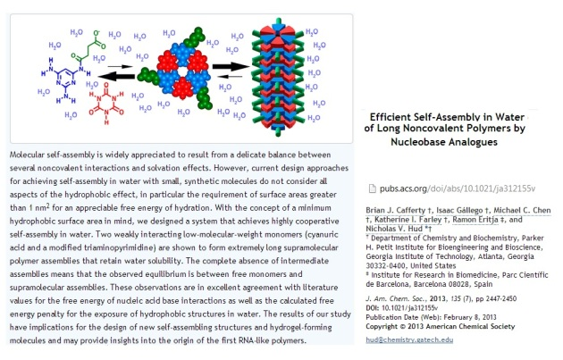 Nucleo bases  analogues   Self assembly in water