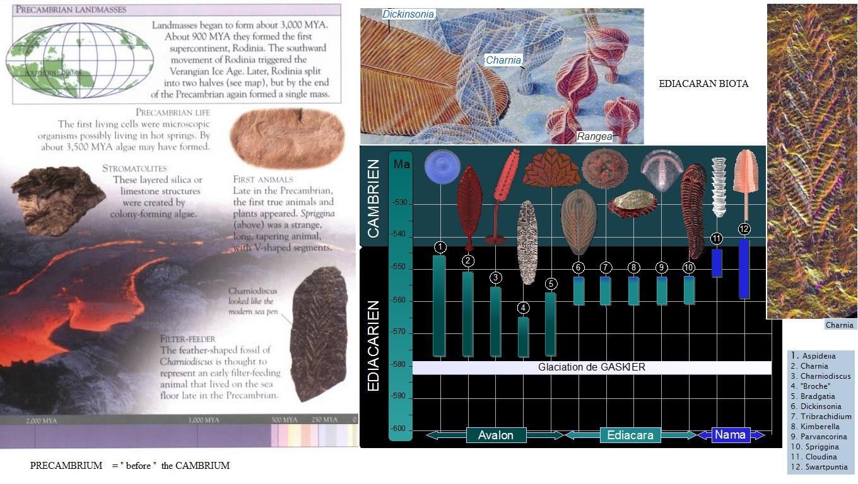 Waarom is relatief dating van Precambrian Rocks moeilijk