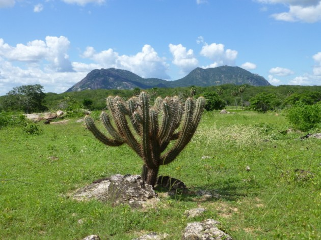 http://www.sciencedaily.com/releases/2014/10/141016100317.htm Roots of the ancient mountain range, long since eroded, were found in Northeast Brazil. Credit: Carlos Ganade de Araujo