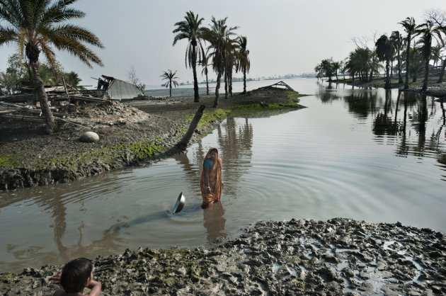 bangladesh-mid-jumbo
